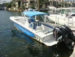 Avanti 29 foot boat