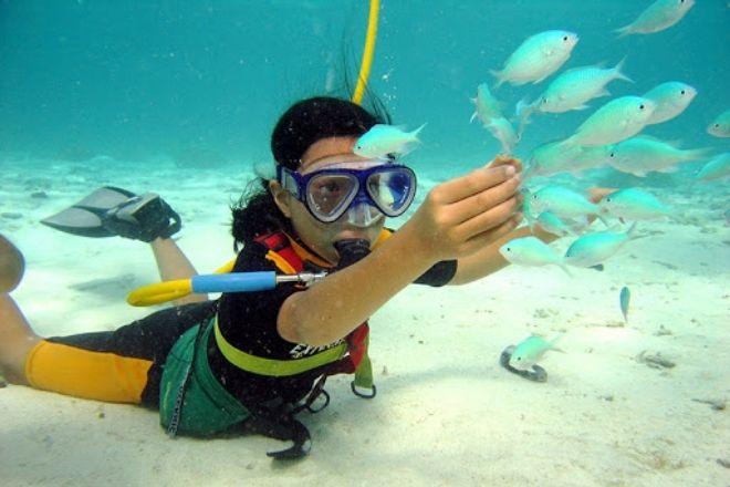 Snookah Virgin Islands